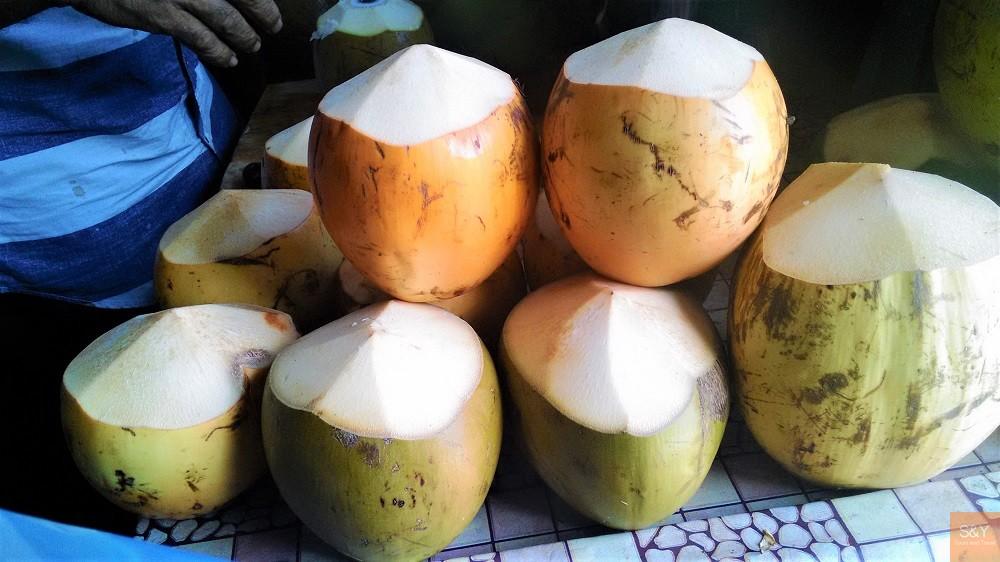 モルディブココナッツ