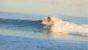 モルディブでサーフィンを楽しむなら!知っておきたいいくつかのポイント